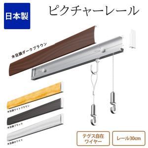 ピクチャーレール セット レール30cm テグス自在 透明ワイヤー ホワイト 白 日本製 RAILSUN Colors(レースサン カラーズ) ピクチャーレール 石膏ボード用|ioo