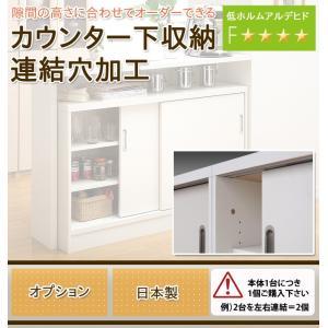 キッチンカウンター カウンター下収納 日本製 オーダーカウンター オプション・連結穴加工】|ioo