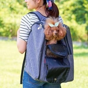 (paypay祭り特価) バックパック・アドベンチャー  (犬 猫 ペットキャリー リュック 小型犬 中型犬 ランキング 軽量 フルカバー メッシュ) ip-plus