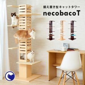 (OFT) 据え置き型キャットタワー necobacoT(ネコバコ T) 【送料無料(北海道・E沖縄・離島等除く)】 (猫 ねこ ネコタワー スリム シンプル 多頭 おしゃれ 木製)|ip-plus