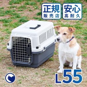 (OFT) ペットケンネル・ファーストクラス L55 [おしゃれ おすすめ ランキング 小型犬 猫 小動物 ハードキャリー コンテナ クレート)|ip-plus