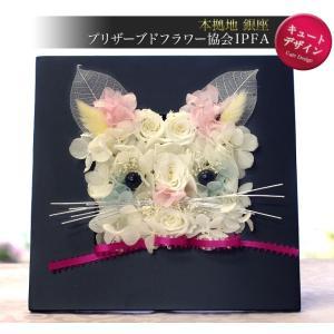 プリザーブドフラワー ギフト ウッドフレーム ピュアリトルキャット プレゼント ブリザーブドフラワー 猫|ipfa