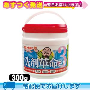 酵素と酸素のWパワー 多目的粉末タイプ 洗剤革命3さん 300g|ippo0709