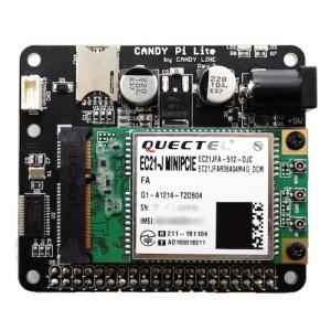 CANDY Pi Lite LTE 【動的IPプリペイド 無制限 1年】 セット|ipsim