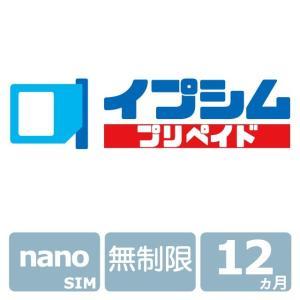 イプシム・プリペイド 固定IPアドレスSIM 無制限タイプ 12ヵ月 (nano SIM) ipsim