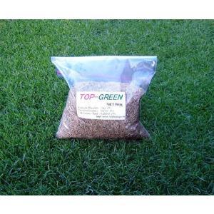 芝生の種・美しい緑を保つTOP-GREEN 500g(芝)