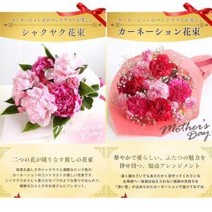 母の日 ギフトランキング プレゼント  母の日ギフト2018 花 鉢花  贈り物 アジサイ マーガレット ベゴニア (2018年母の日)(代引不可)|irisplaza|11