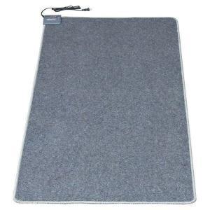 ホットカーペット 1畳 本体 ダニ退治 折り畳み コンパクト 暖房面積切替 電気カーペット TWA-1000BI TEKNOS (D) (あすつく)