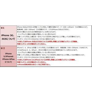 防災用品 地震対策 懐中電灯 手回し充電ラジオライト 限定数量超特価|irisplaza|06