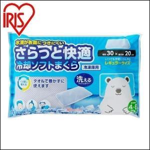 発熱時や頭痛に、寝苦しいときの安眠用や、打撲やねんざなどにも。 冷凍庫で冷やして、繰り返し使える冷却...