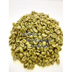 キリマンジャロキボー AA 1kg 生豆|iritateya