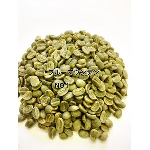 コーヒー生豆 ブルーマウンテン No1 1kg 生豆|iritateya