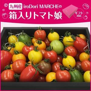 九州産 iroDori MARCHEの箱入りトマト娘 800g irodori-ma