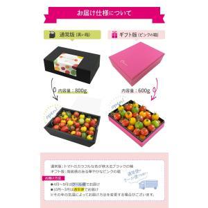 九州産 iroDori MARCHEの箱入りトマト娘 800g irodori-ma 03