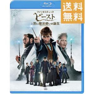 ファンタスティック・ビーストと黒い魔法使いの誕生   Blu-ray