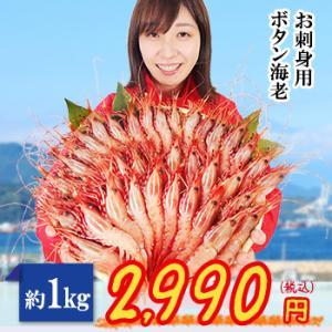 お腹いっぱいボタンエビを食べたい!刺身もOKの徳用冷凍ボタンエビランキング≪おすすめ10選≫の画像