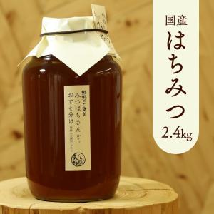 天然はちみつ  奥熊野山蜜 2400g 日本ミツバチ天然蜂蜜(ハチミツ)国産 日本産 和歌山産|irodoriya