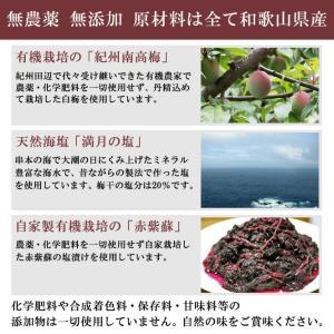 梅干し 無農薬 南高梅 白干し 1kg 熊野のご褒美 無添加 ご当地 紀州  和歌山|irodoriya|02