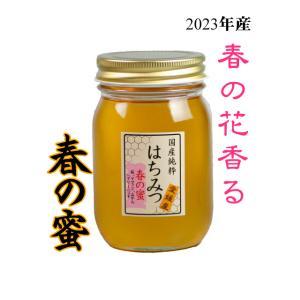 はちみつ 国産はちみつ 蜂蜜 ハチミツ 愛媛県産 春の蜜(百花蜜) 500g