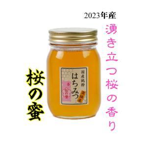 はちみつ 国産はちみつ 蜂蜜 ハチミツ 愛媛県産 桜の蜜 さくら サクラ 500g|iroha-beebeey