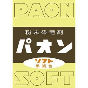 パオン 粉末 ソフト黒褐色|iron-peace