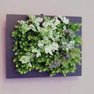 壁掛けグリーンフレームフレッシュアイビーブラック(光触媒)造花・観葉植物・インテリアグリーン|iron-peace