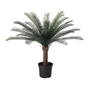 IKEA/イケア FEJKA:人工観葉植物83 cm ソテツ (104.103.13)|iron-peace
