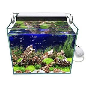 GankPike アクアリウムセット 超クリアガラス350水槽 淡水魚水槽 (容量 約31L) iron-peace