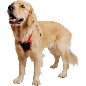 (大型犬用・Mサイズ)成長期も使える引っ張り制御胴輪