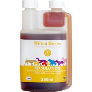 (ヒルトンハーブ)KDソリューション 250ml(59898) ironbarons
