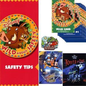 ディズニー プンバァ&ティモン ライオンキング Wild about Safetyピン&カード&リーフ 安全のためのお願い 太陽の下 USAパーク|is-club
