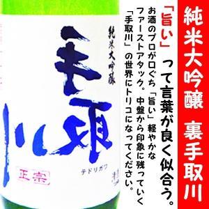 日本酒 裏手取川 純米大吟醸 720ml (うら てどりがわ) 世代別 50代日本酒ベストランキング第1位獲得!!|is-mart