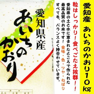 あいちのかおり 愛知県産100% 10kg袋  コシヒカリに...