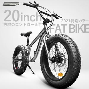 ファットバイク シルバー メタル 銀 かっこいい 20インチ 極太タイヤ 太いタイヤ 自転車本体 シマノ 雪道 海岸 アイゼル EIZER F120|isdinf