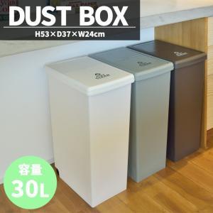ゴミ箱 おしゃれ30リットル フタ付き ダストボックス キッチン スリム 分別 日本製  北欧 安い|isdinf