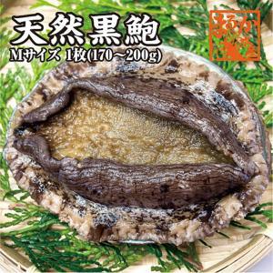 活黒あわび Mサイズ 170g〜220g 1枚 [あわび]|isemaruka