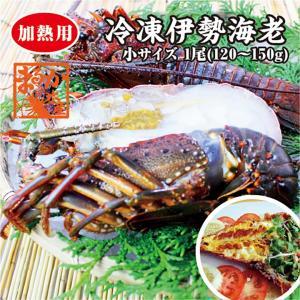 伊勢海老 冷凍 小(120〜150g)  [魚介類] (活〆冷凍) |isemaruka
