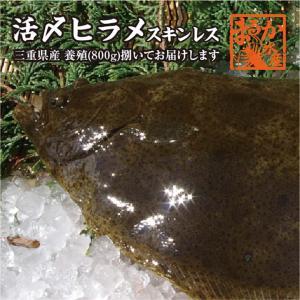 活ヒラメ 捌いてお届けします 800g スキンレス 三重県産(養殖)[魚介類]|isemaruka