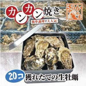 牡蠣のカンカン焼き 「桃こまち」 20個 軍手 ナイフ付[牡蠣]