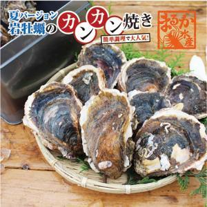 夏牡蠣のカンカン焼き 三重県産 8個 軍手、ナイフ付[牡蠣] isemaruka