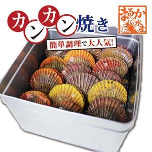 アッパッパでカンカン焼き 三重県産 16個  ひおうぎ貝 [桧扇貝]|isemaruka