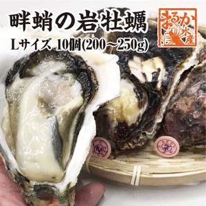 畔蛸(あだこ)の岩がき Lサイズ(200/250g)10個 [岩ガキ]