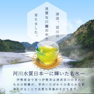 伊勢茶 初摘一番煎茶 70g メール便 送料無料 お茶 日本茶 三重県産 農薬・肥料不使用栽培|isesima|05