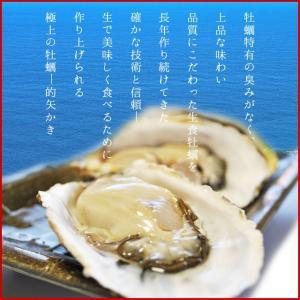 佐藤養殖場 的矢かき 殻付き 牡蠣 15個入り 送料無料 生食用 (手袋片手用・専用牡蠣ナイフ付) 冬季限定|isesima|04