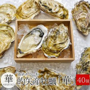 的矢牡蠣 殻付き Lサイズ40個入 送料無料 佐藤養殖場の滅菌技術で浄化した生食用牡蠣(冬季限定)