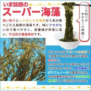 離島 あかもく 90g×10パック 伊勢志摩産 送料無料 アカモク ギバサ 海藻 冷凍 チューブ タイプ|isesima|04