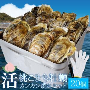 桃こまち牡蠣カンカン焼きセット15個入 冷凍牡蠣(2kg前後...