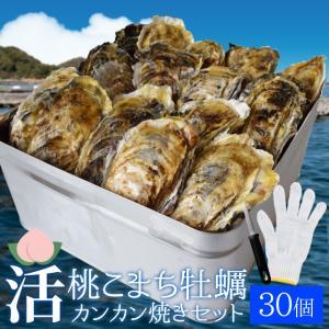 桃こまち牡蠣カンカン焼きセット30個入 冷凍牡蠣(3.5kg...