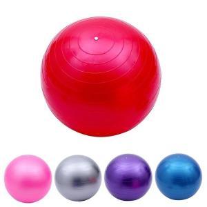 バランスボール 45cm 55cm フットポンプ付 ヨガボール ダイエット器具 |ishi0424|02