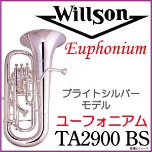Willson ウィルソン/ TA2900BS ブライトシルバー 【斉藤充先生選定品】【ウインドパル】|ishibashi-shops